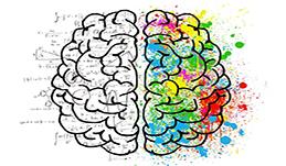Test : êtes-vous plutôt cerveau gauche ou cerveau droit ?